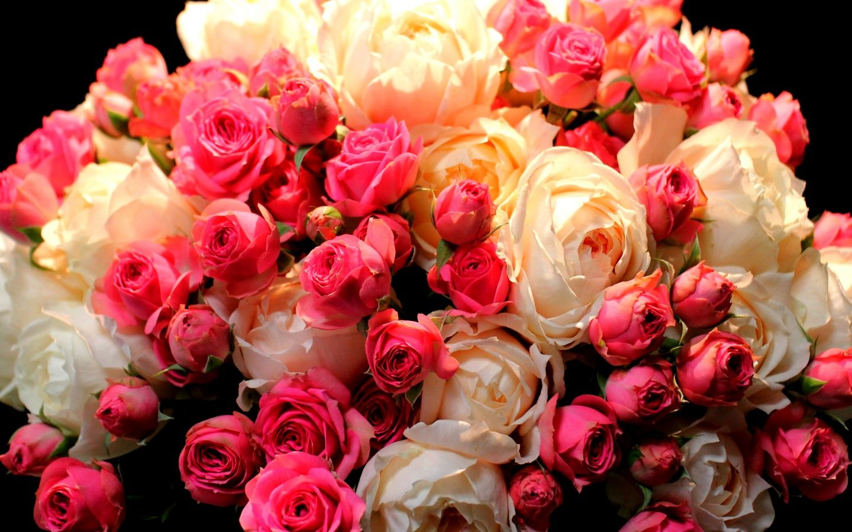 Скачать картинки цветы доброе утро