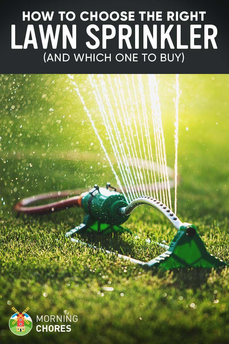 How to Buy Lawn Sprinklers