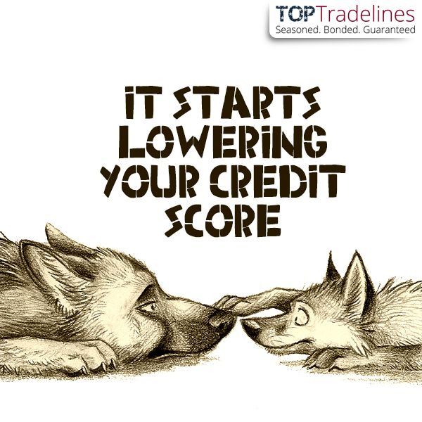 Once you make a late payment on a trade line it becomes a negative #tradeline. #creditscore #creditrepair #mortgages