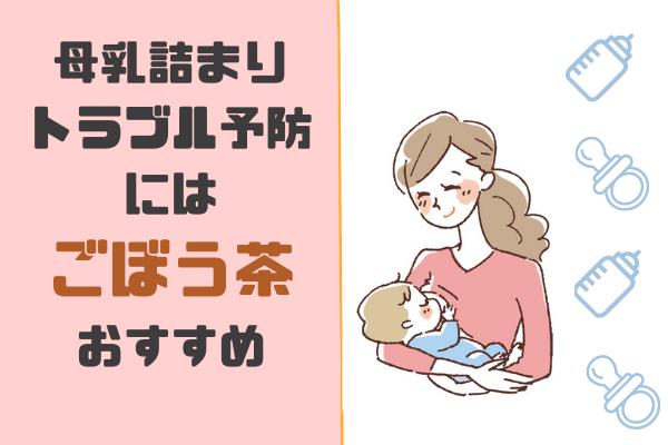 母乳お助け 母乳の詰まり 乳栓予防に ごぼう茶のススメ オコジョ的じゅりいズム 母乳 母乳 育児 タンポポ茶