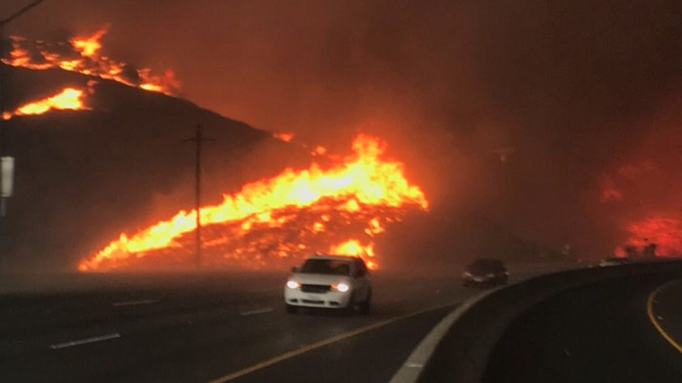 California Wildfire Erupts In Thousand Oaks Near Scene Of Nightclub Shooting With Images California Wildfires California Malibu