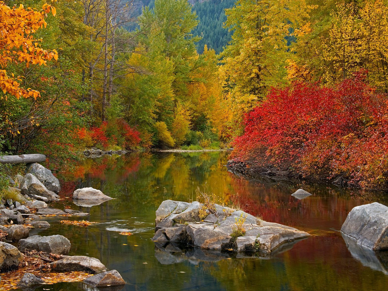 fond d ecran paysage automne 02 paysages et nature pinterest paysage automne cran et automne. Black Bedroom Furniture Sets. Home Design Ideas