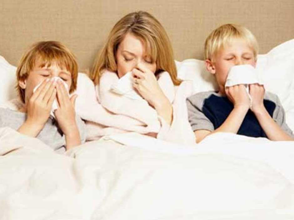 """Результат пошуку зображень за запитом """"Cold And The Flu"""""""