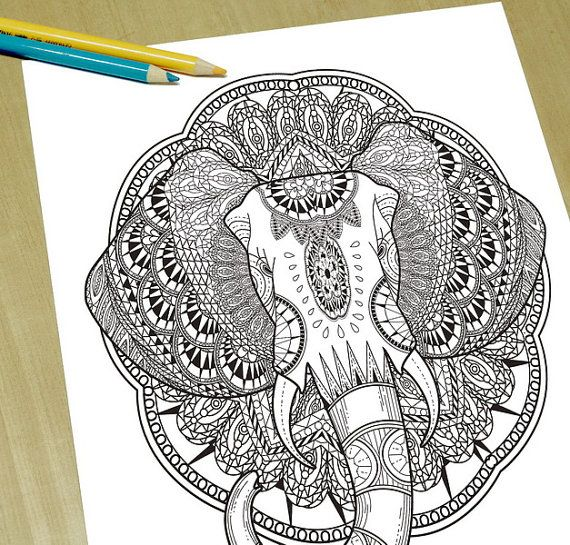Gorgeous Elephant Head Adult Coloring Page By DreamStateStudio