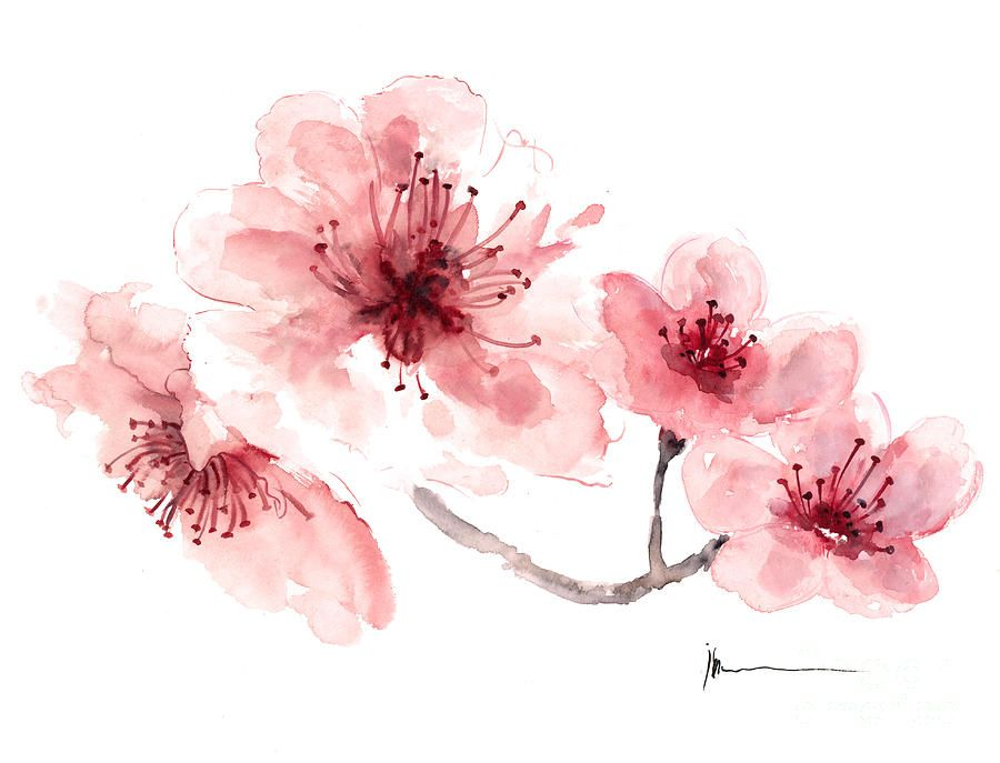Cherry Blossom Painting Pink Tree Blooming Branch Watercolor Card