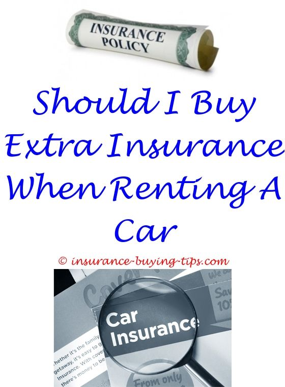 Aaa Insurance Quote Prepossessing Aaa Car Insurance Online Quote  Dog Insurance
