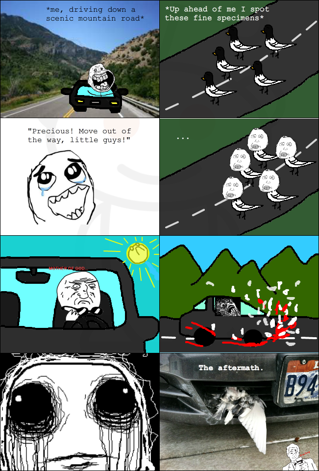 Rage Comic: I was going 70 mph [Courtesy of halfbreed1204