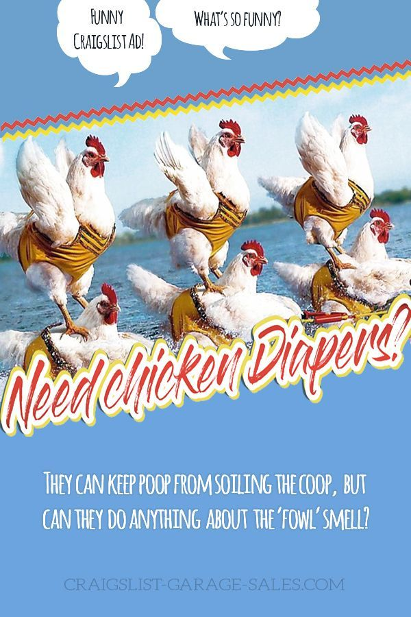 FUNNY CRAIGSLIST ADS Need chicken diapers? Funny