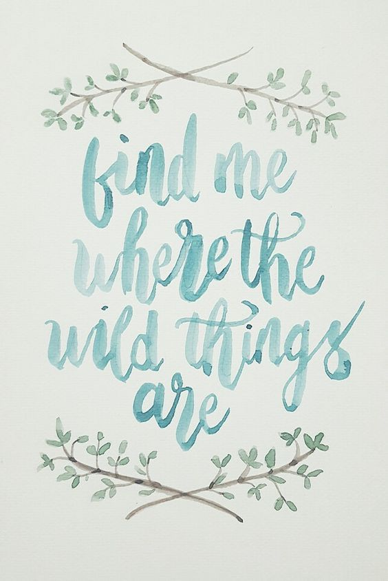 Find me where the wild things are Quotes