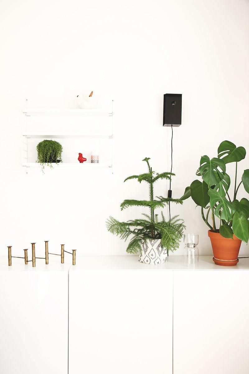 hunajaista olohuone sisustus decoration sisustusblogi kasvit