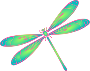 dragonfly outline clipart clipart panda free clipart images rh pinterest co uk dragonfly clipart free download free dragonfly clipart images