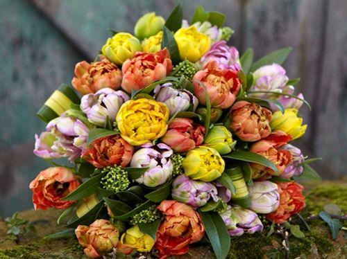 Bouquets By Jane Packer Tulip Kaleidoscope