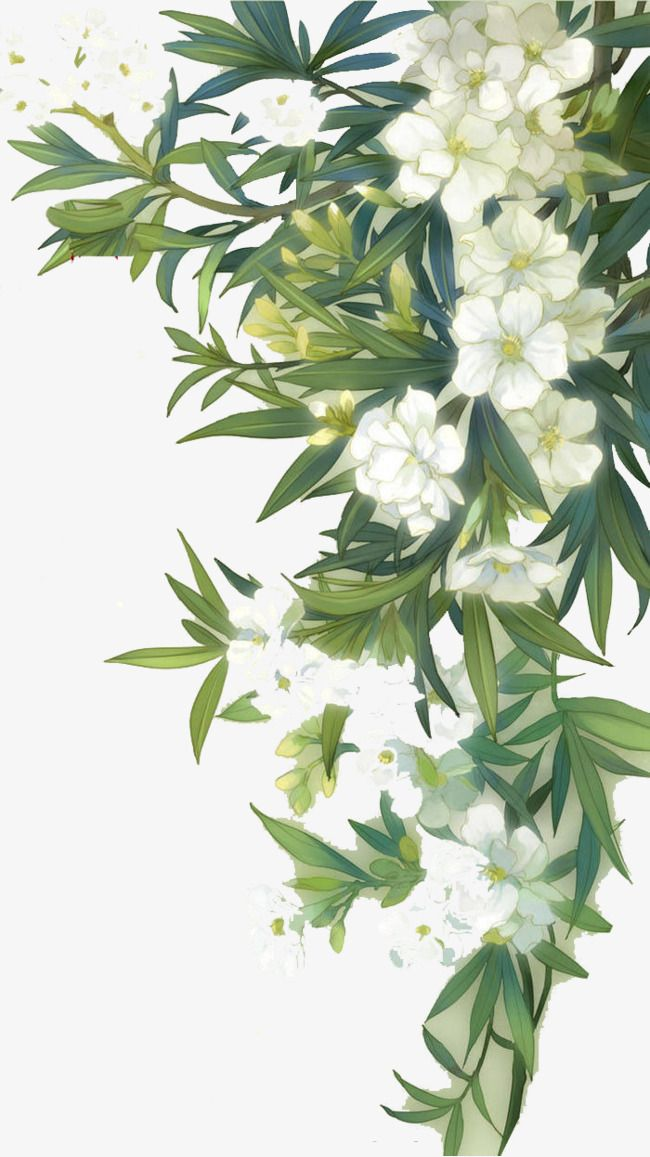 White Blooming Flowers And Green Leaves Green Leaves Leaf White Png And Psd Flower Painting Floral Poster Floral Painting