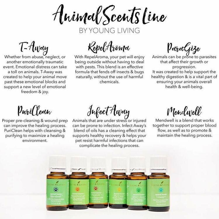 11+ Young living animal scents ideas