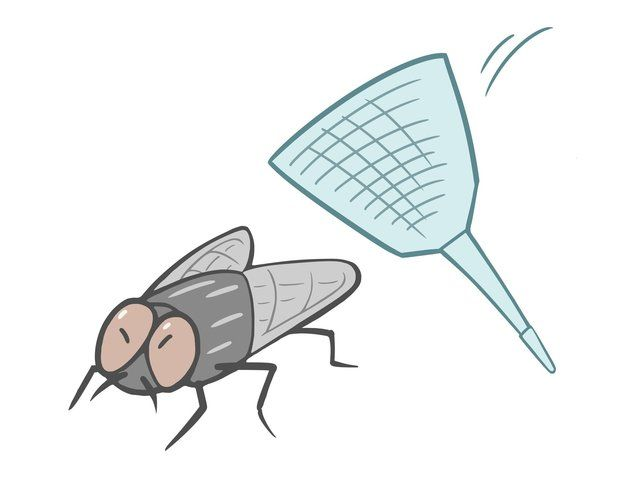 寝てるときに耳元で ブ ン と飛びまわる蚊を 確実に退治する方法 コバエ 蚊 蚊 対策