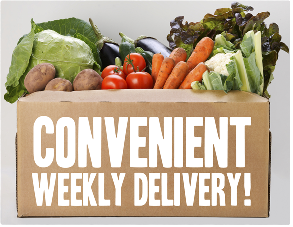 Eat Green Organics Home Delivery Organics in London