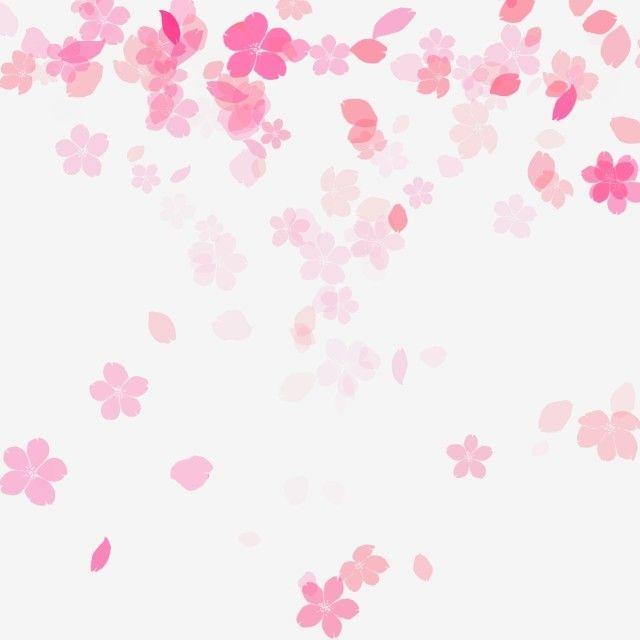Flower Petal Flower Petal Pink Girl Shabby Cute Sakura Cherry Blossom Spring Garden Flower Petals Flowers Cherry Blossom