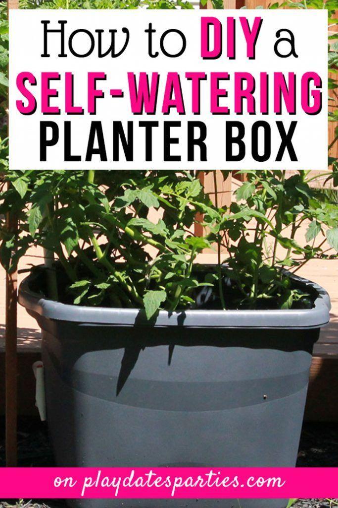 DIY Self Watering Planter für wunderschöne Pflanzen den ganzen Sommer lang #selfwatering
