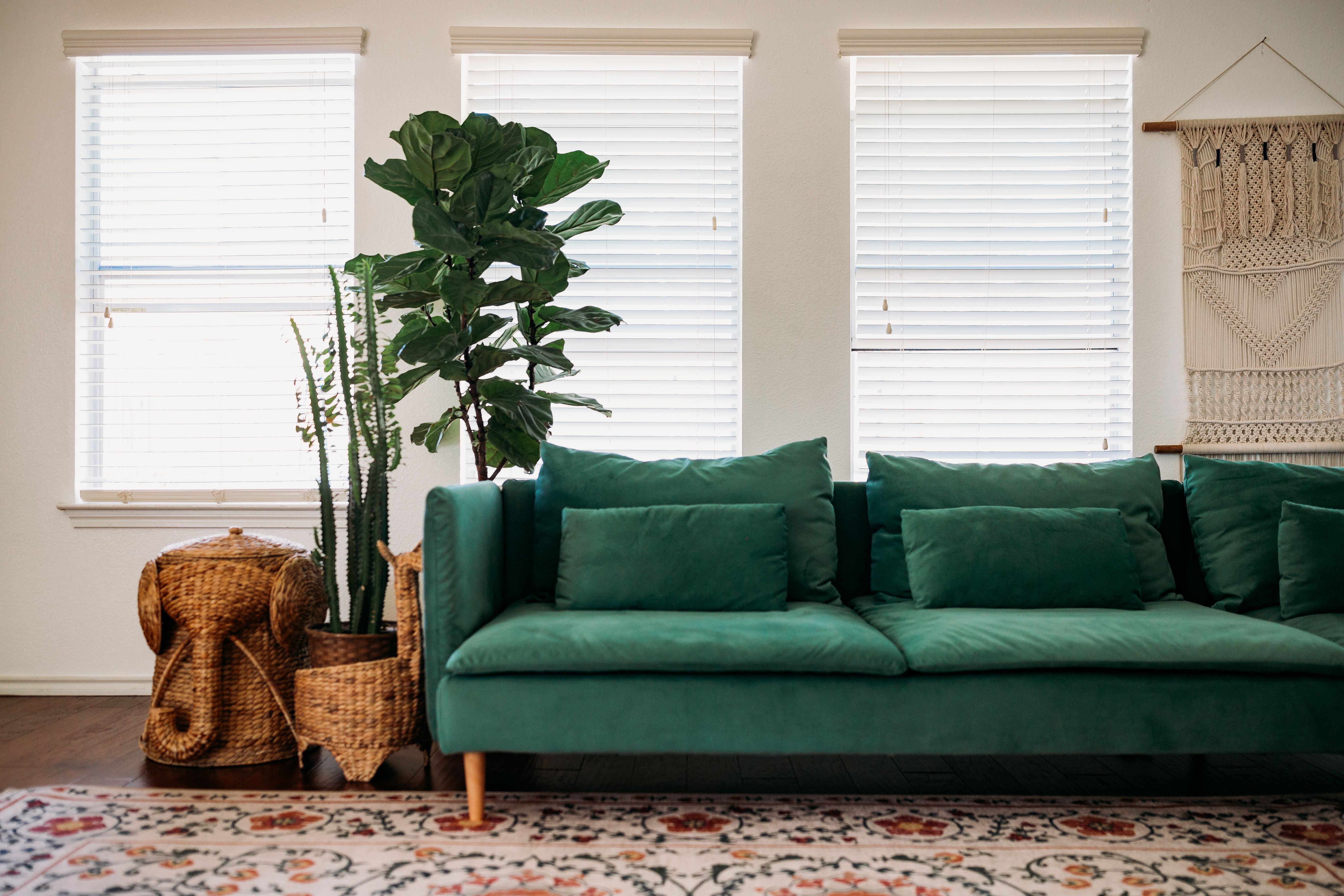 The Time You Ve Been Waiting For Ultimate Guide For Holiday Season Home Decoration Green Couch Living Room Teal Couch Living Room Green Velvet Sofa