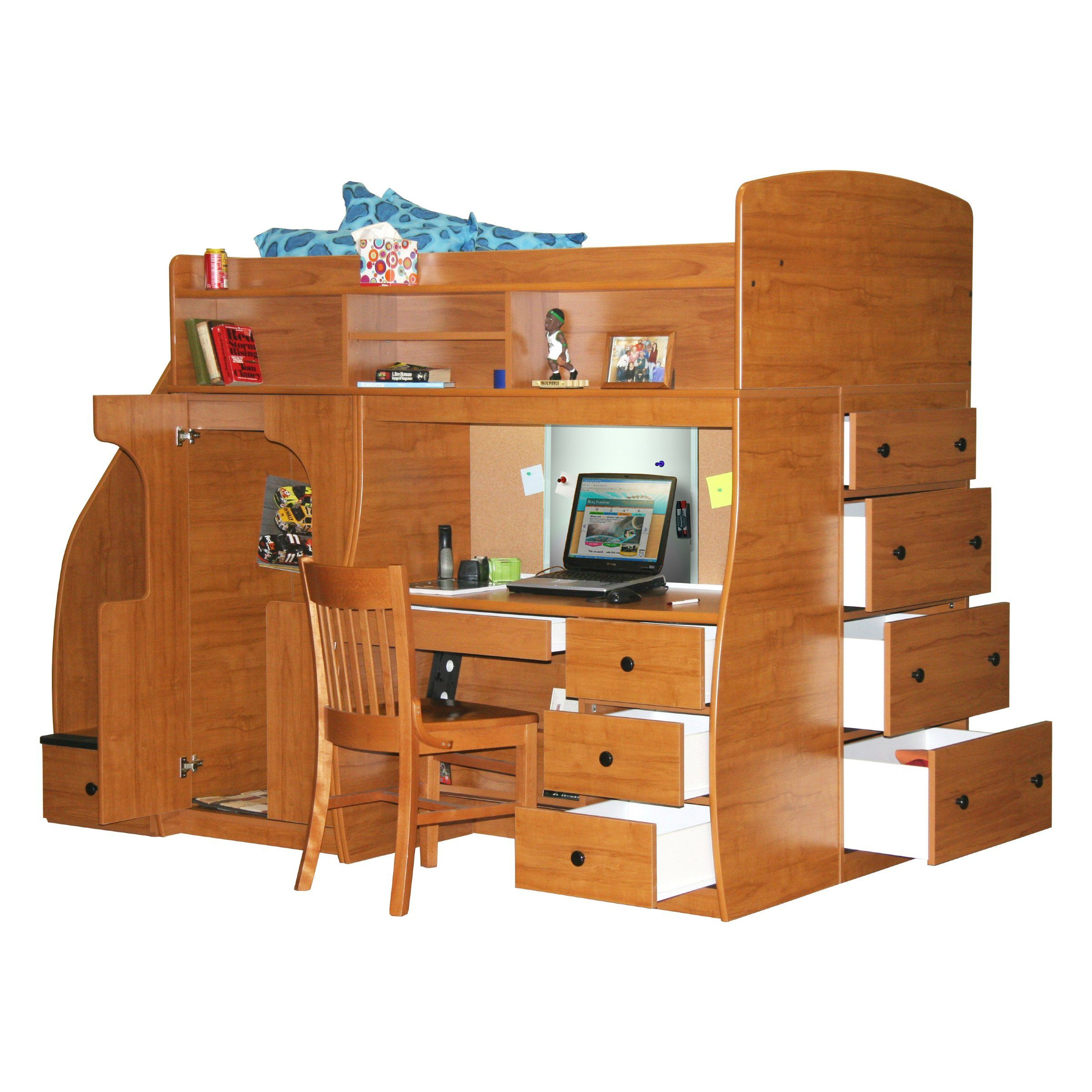 Play and Study Twin Loft with Chest and Stairway - Nutmeg - Bunk Beds & Loft Beds at Hayneedle