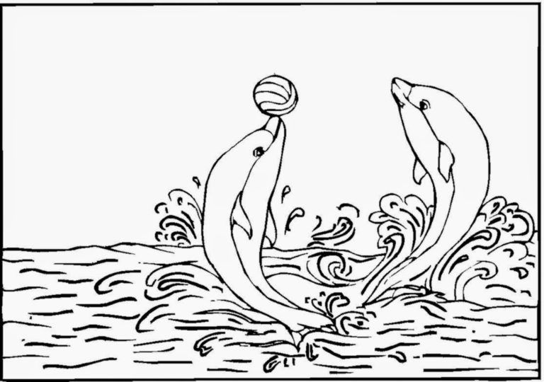 Winter Dolphin Coloring Pages