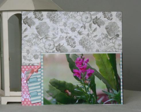 O Sul é Lindo! - Botanical Tea - com fotos 12