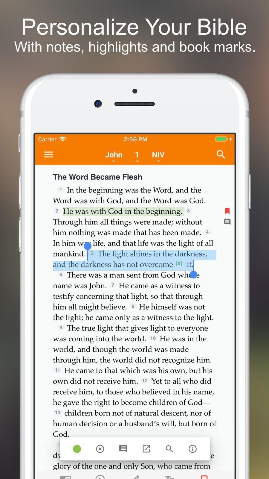 Holman bible iosbooksappapps message bible nasb