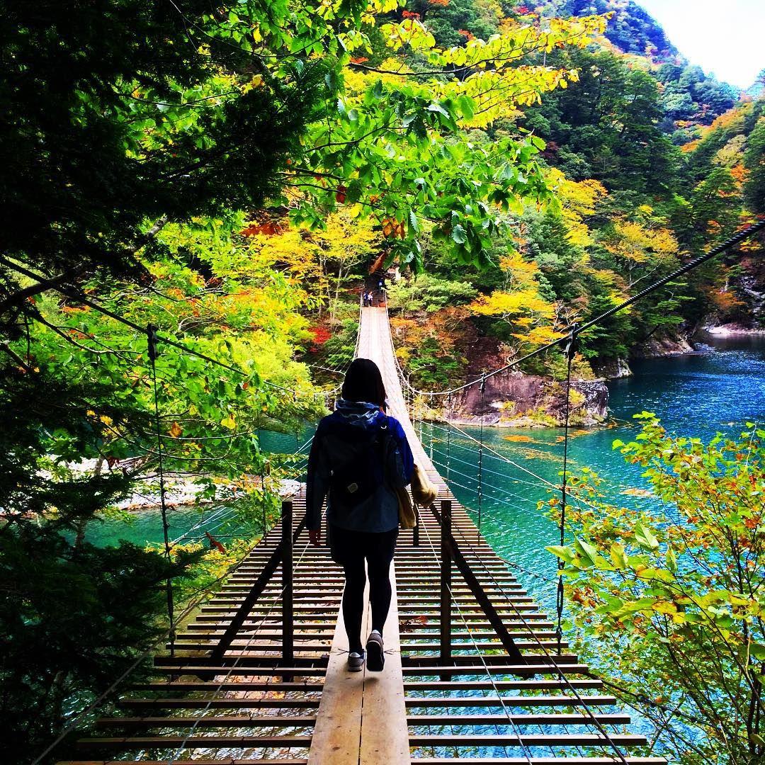 寸又峡(すまたきょう)は静岡県の大井川の支流である寸又川の渓谷。エメラルドグリーンに輝く寸又川にかかる歩行者専用の「夢の吊り橋」は、かなりスリリングな吊り橋です。一度に渡れるのは10人までですので注意!