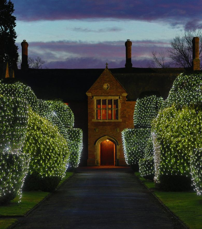 Commercial Christmas LED net lights by Lights4fun