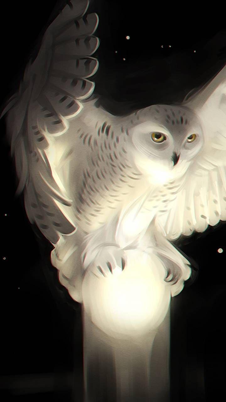 Owl wallpaper by Zsoooooomleeeee – 26 – Free on ZEDGE™
