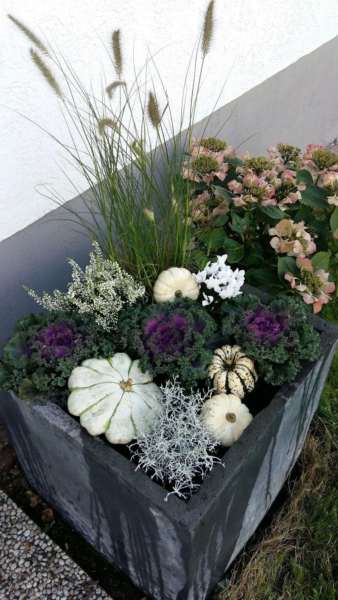 Fall contain #herbsttischdekorationen