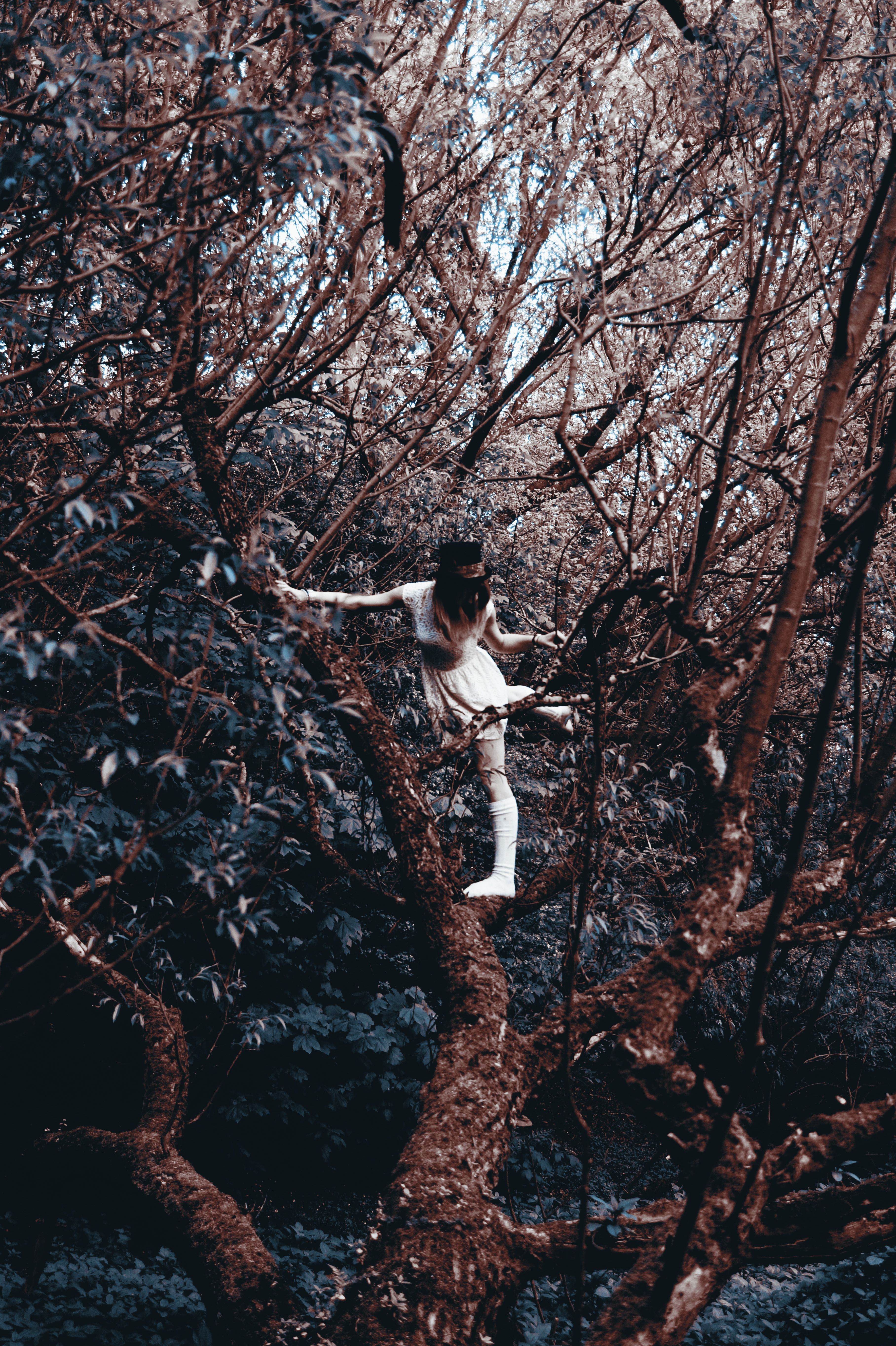 Photography Of Models In The Woods With Vintage, Gothic, And
