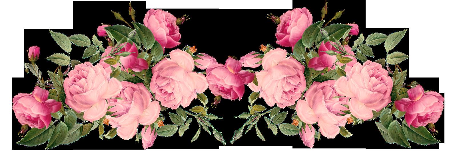 Free Pink Roses Border, Vintage Style