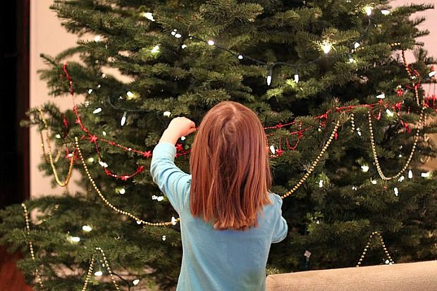 Here is pretty much every tip on the internet I found regarding how to choose a freshly-cut Christmas tree.