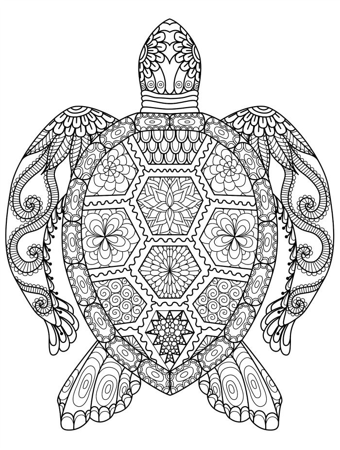 sea turtle coloring page for adults for free download | Crafty ...