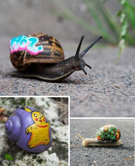 Unique Snail Graffiti, No One Will Catch You...