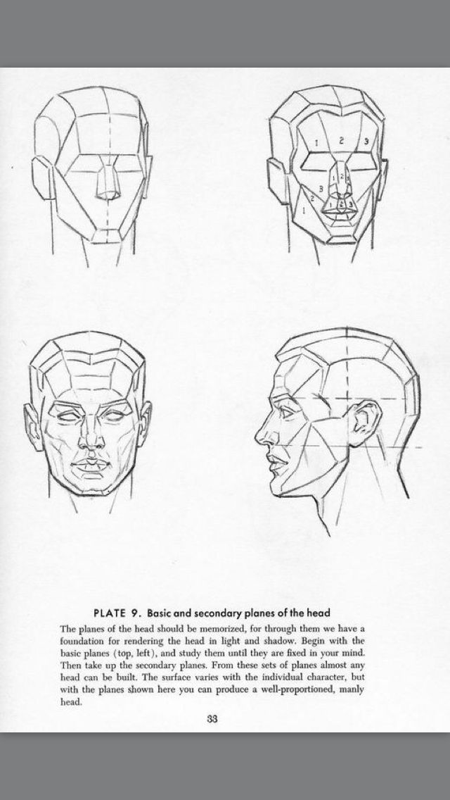 Face planes | Reference - Face Lighting | Pinterest | Planes and ...