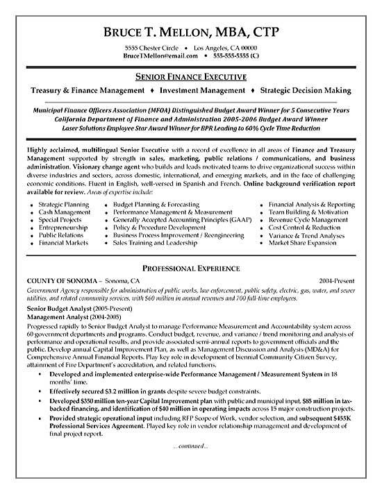 financial manager resume example - Financial Resume Example