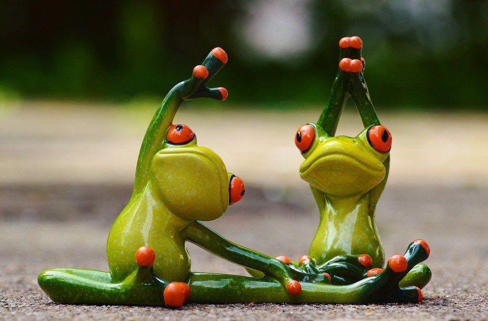 愛がないって言われる 名古屋のカウンセリング 野口暢子公式サイト くれたけ心理相談室 面白いカエル カエル画像まとめ カエル 画像