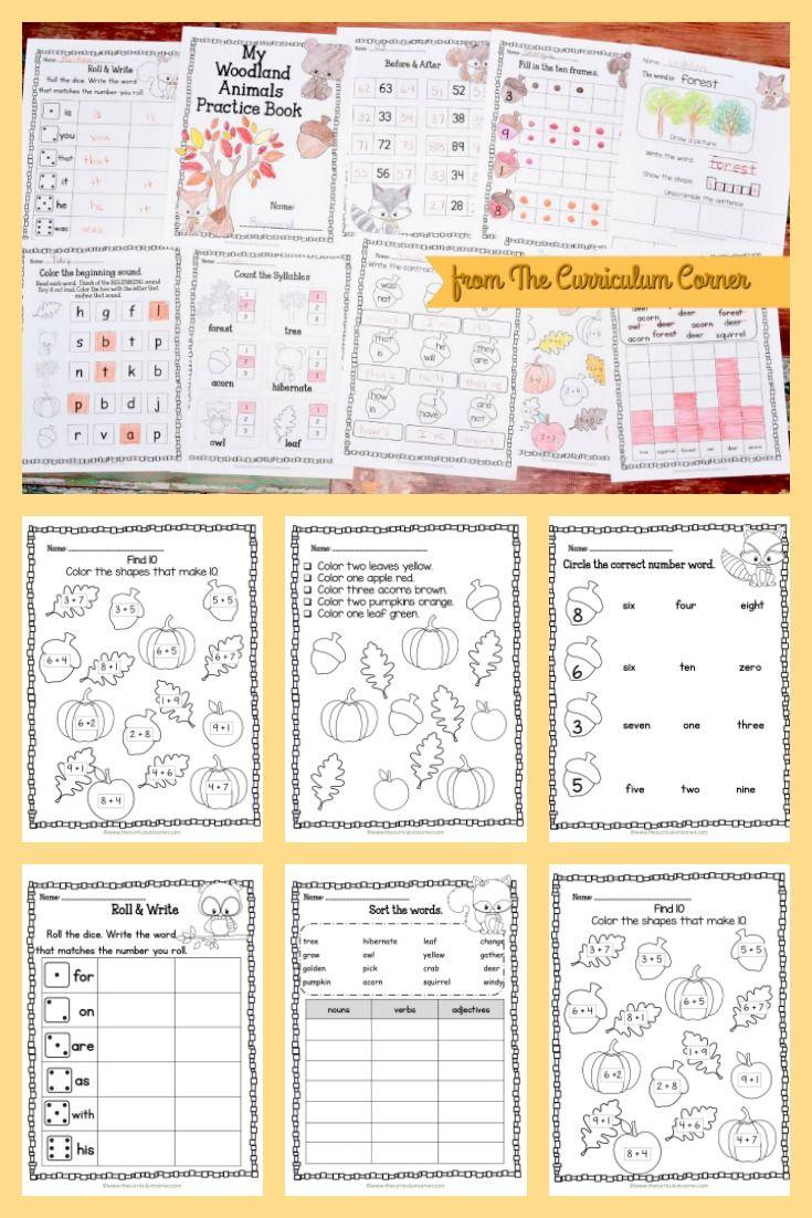 Woodland Animals Print Go Kindergarten Resources Teaching Math Math Resources [ 1102 x 735 Pixel ]