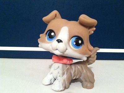 Littlest Pet Shop 67 Grey Collie Dog Ebay Little Pets Lps Dog