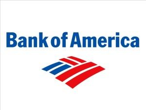 Aaanetaccess Online Banking Benefits Bank Of America America Online Organization