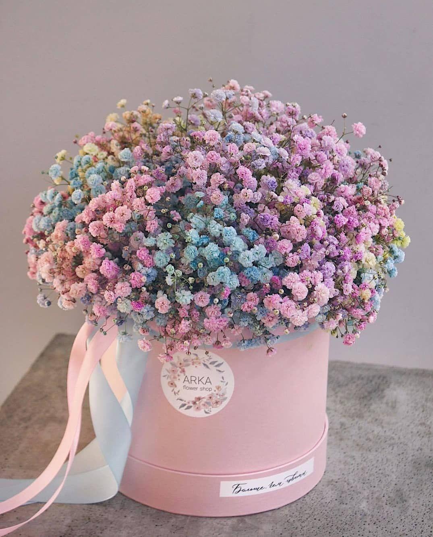 مساءكم ورد🌹 Luxury flowers, Beautiful flower