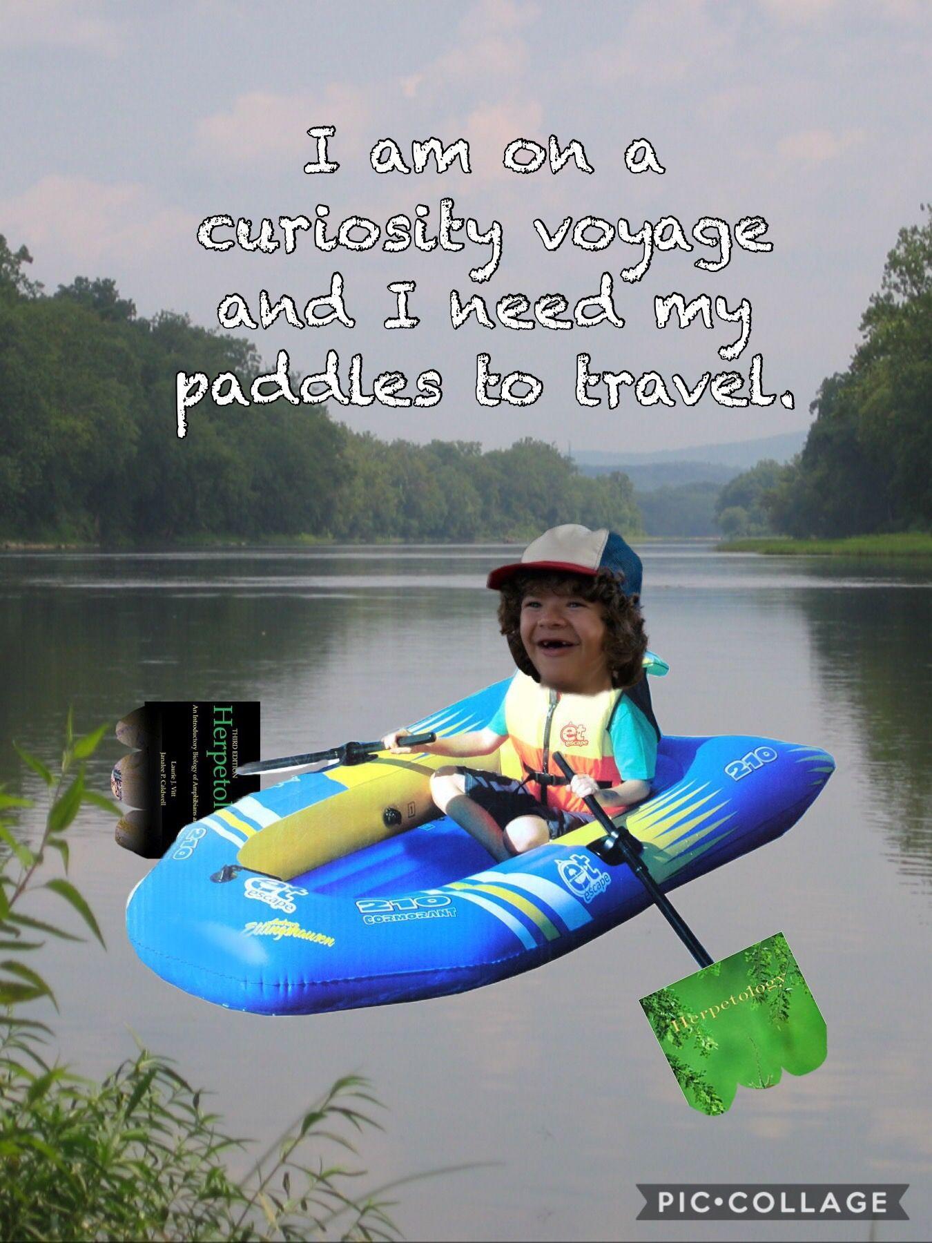 Dustin Curiosity Voyage Stranger Things Funny (Im Sorry I Did
