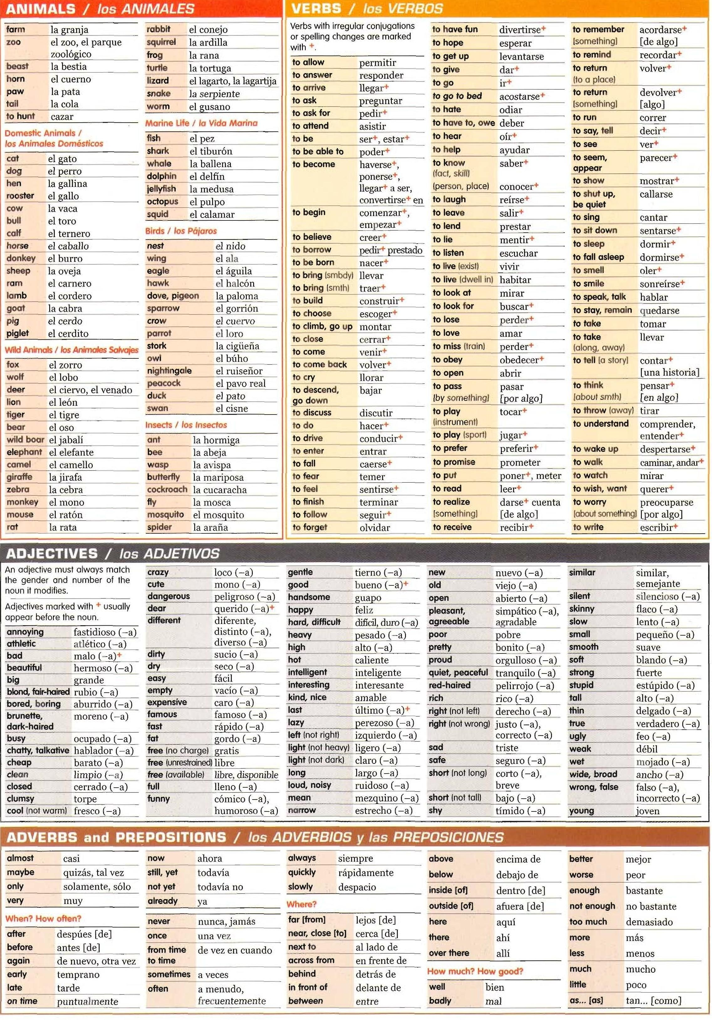 Spanish grammar chart-Animals, verbs, adjectives, adverb and ...