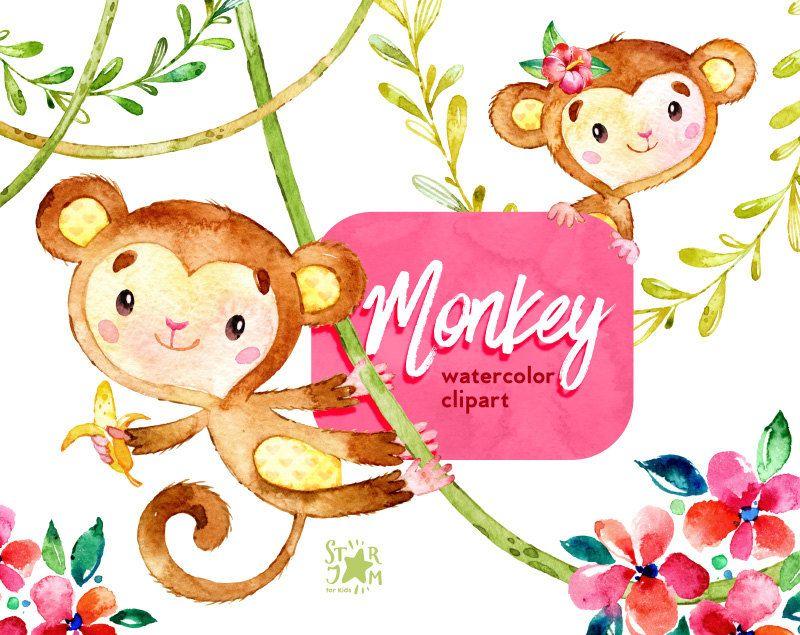 Scimmia. Clipart animali dell'acquerello giungla