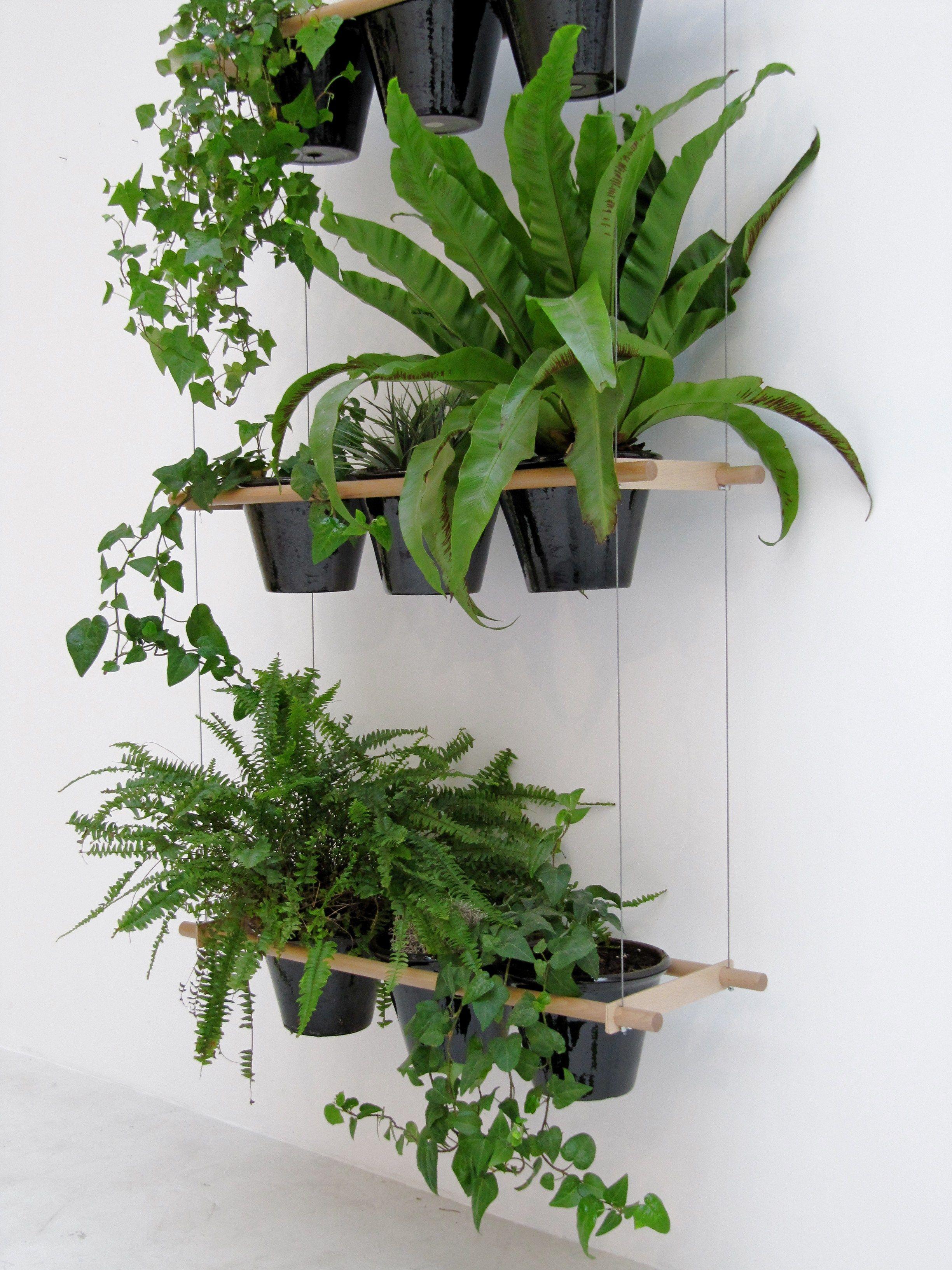 Etcetera Window Plantershanging Plantersindoor
