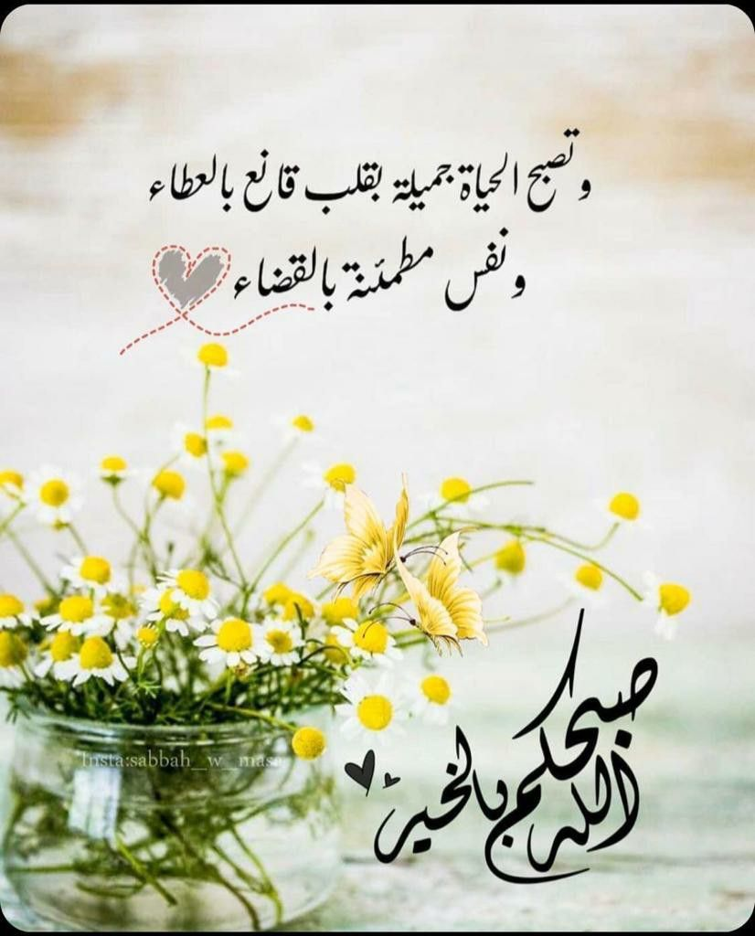 Pin By Shourouk Alshames On صباح الخير Beautiful Morning Messages Good Morning Greetings Good Morning Arabic