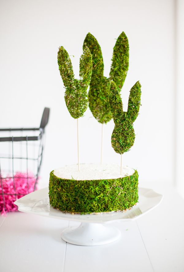 Cut the moss to the correct height for the cake and back it with wax paper.Carefully run the paper around the side of the cake