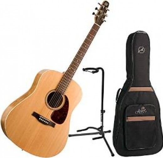 Best Acoustic Guitars For A Person With Small Hands Best Acoustic Guitar Seagull Guitars Guitar